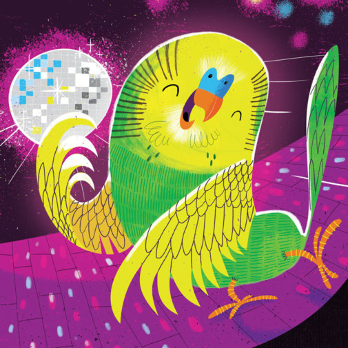 The Budgie Likes to Boogie Storytime Magazine illustration by Josh Cleland